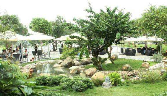cafe thảo nguyên xanh